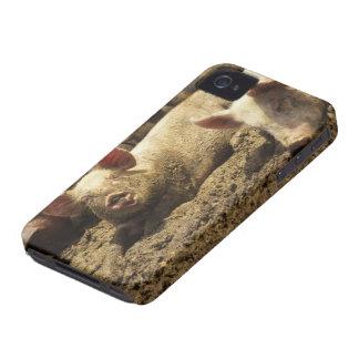 MO: Ste Genevieve, pig farm iPhone 4 Cover