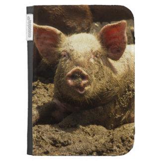 MO: Ste Genevieve, pig farm Kindle Keyboard Case