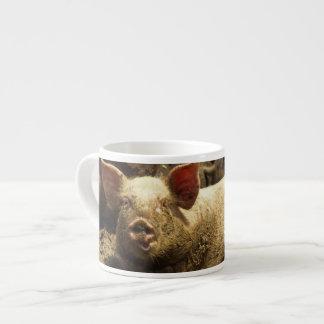 MO: Ste Genevieve, pig farm Espresso Cup