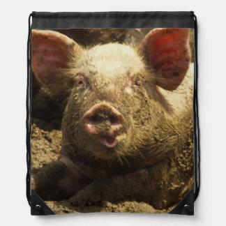 MO: Ste Genevieve, pig farm Drawstring Backpacks