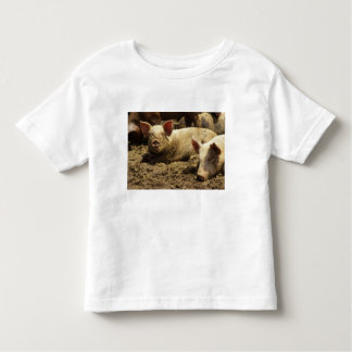 MO: Ste Genevieve, pig farm Toddler T-shirt
