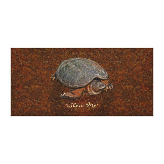 Mo the Snapping Turtle unique Canvas Wall Print