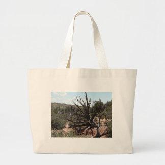 moab scenery tote bag