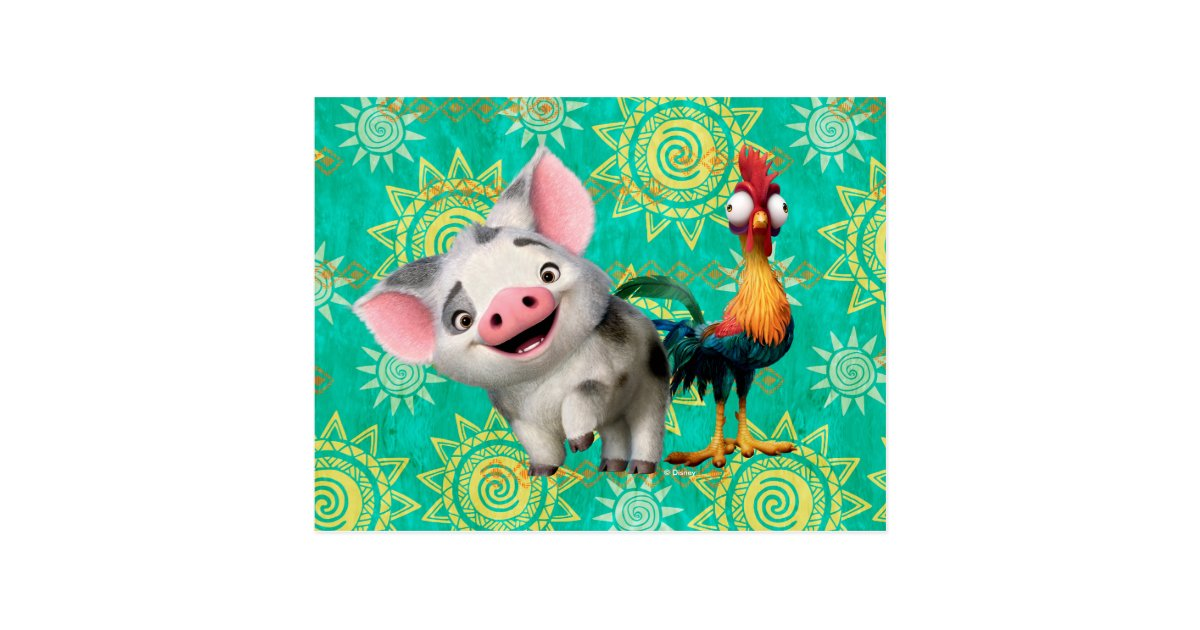 Moana First Mate Amp Top Rooster Postcard Zazzle Com