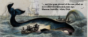 moby dick quotes