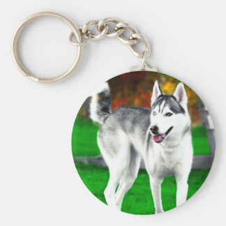 Mocha The Husky In Fall Keychains