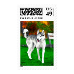 Mocha The Husky In Fall Stamps