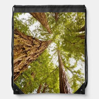 Mochila de maderas de Muir