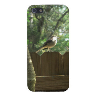Mocking Bird Case For iPhone SE/5/5s