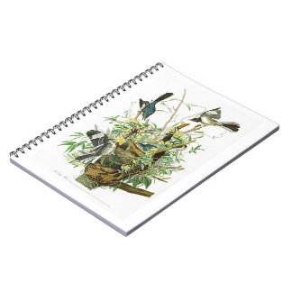 Mocking Bird John James Audubon Birds of America Spiral Notebook