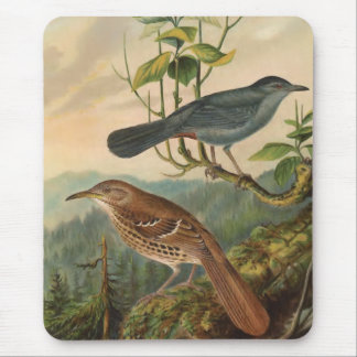 Mockingbird and Brown Thrasher Mouse Pad