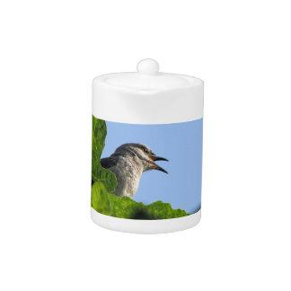 Mockingbird bonito