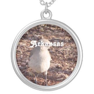 Mockingbird de Arkansas Colgante Redondo