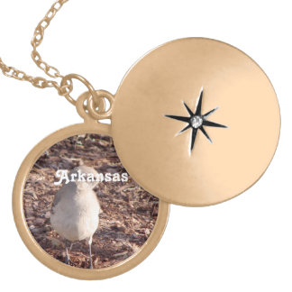 Mockingbird de Arkansas Medallón