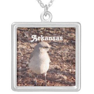 Mockingbird de Arkansas Colgante Cuadrado
