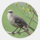 Mockingbird en los pegatinas de la rama pegatina redonda