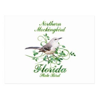 Mockingbird Florida State Bird Postcard