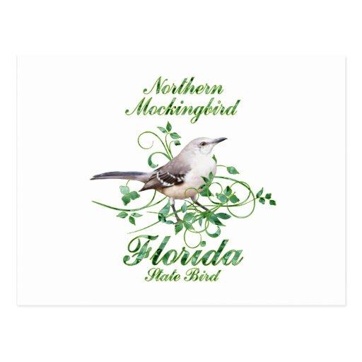 Mockingbird Florida State Bird Postcards