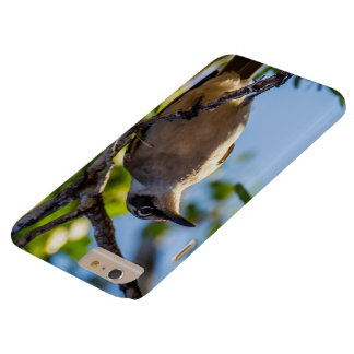 Mockingbird in a Tree Barely There iPhone 6 Plus Case