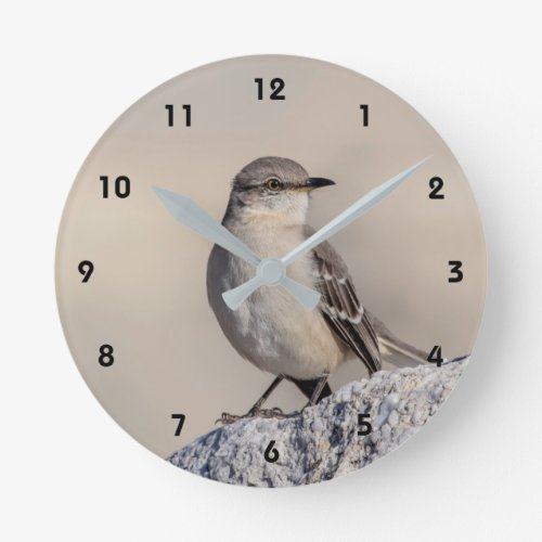 Mockingbird on a rock round clock