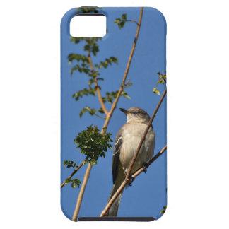 Mockingbird on Branch iPhone SE/5/5s Case