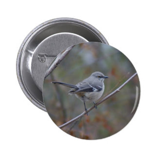 Mockingbird Ornithology Button