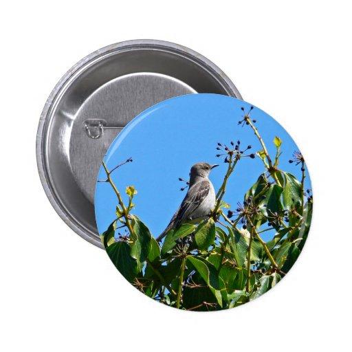 Mockingbird Pins