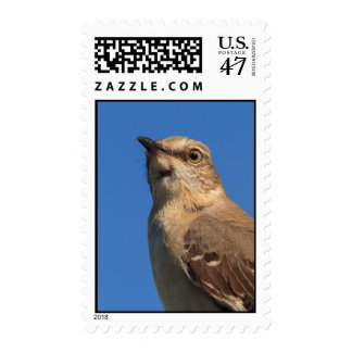 Mockingbird Portrait Postage