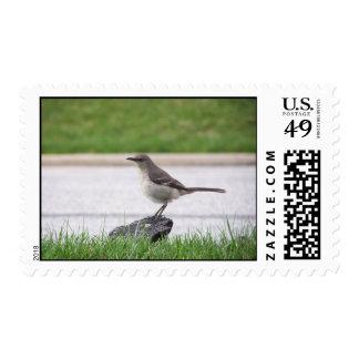 Mockingbird Postage