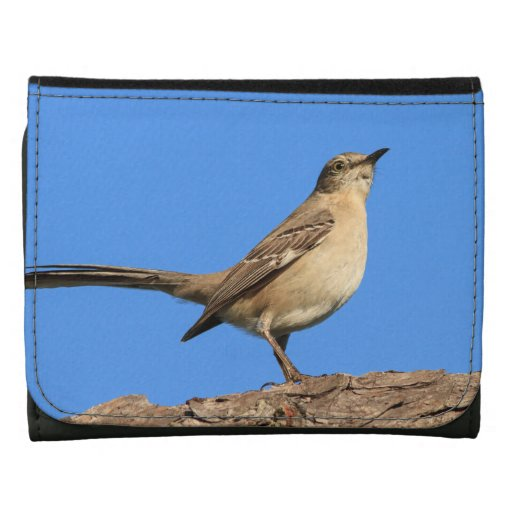 Mockingbird Profile Wallets