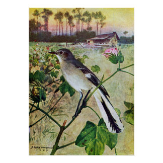 Mockingbird septentrional póster