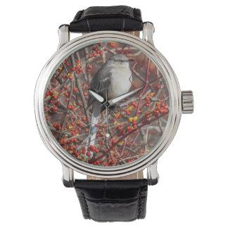 Mockingbird septentrional reloj