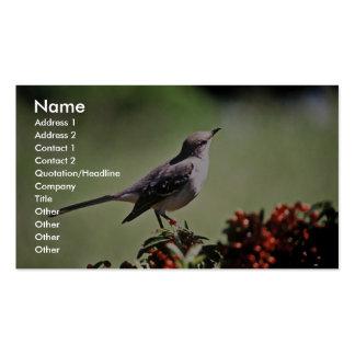 Mockingbird septentrional tarjeta de visita