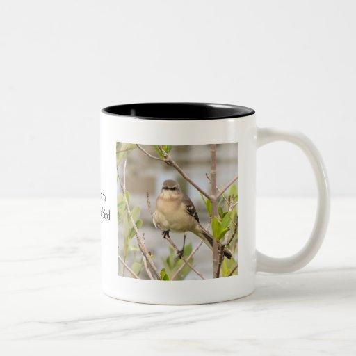 Mockingbird septentrional taza