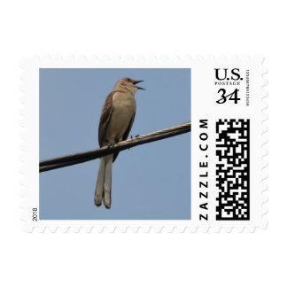Mockingbird Singing 2 Postage