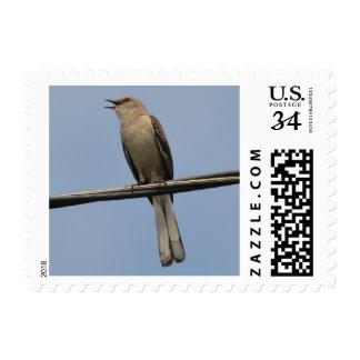 Mockingbird Singing Postage