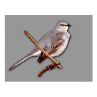 Mockingbird Tarjetas Postales