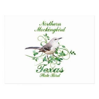 Mockingbird Texas State Bird Postcard