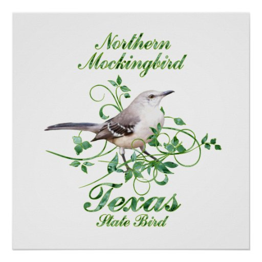 mockingbird texas state bird poster