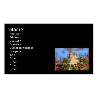 Mockingbird & Yaupon Berries Business Card Template