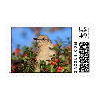 Mockingbird & Yaupon Berries Postage