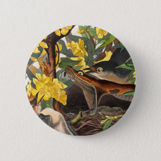 Mockingbirds, John James Audubon Button