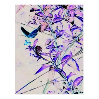 Mod Butterfly - Postcard