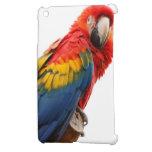 MOD con clase elegante del Macaw colorido tropical iPad Mini Protector