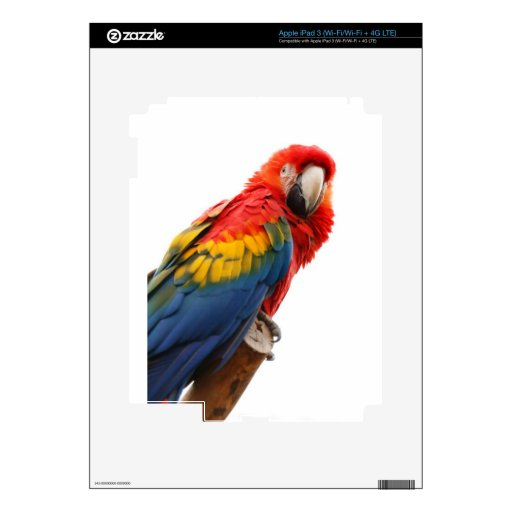 MOD con clase elegante del Macaw colorido tropical iPad 3 Pegatinas Skins