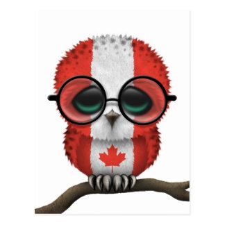 Moda canadiense Nerdy adaptable del búho del bebé Tarjetas Postales
