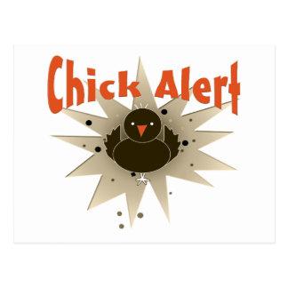 Moda de la alarma del polluelo postales