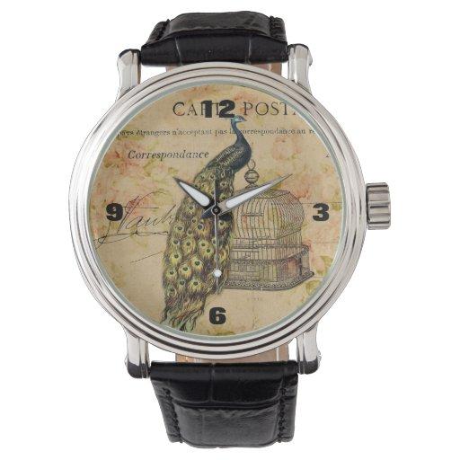 moda floral de París del birdcage del pavo real Reloj De Mano