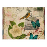moda floral de París del pájaro botánico francés f Tarjetas Postales
