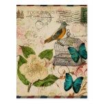 moda floral de París del pájaro botánico francés Postal